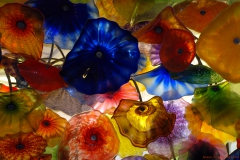 glass-flowers